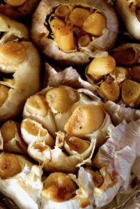 close up of roasted heads of garlic