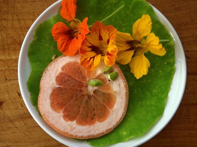 slice of grapefruit on a plate with green leaves and orange and yellow flowers