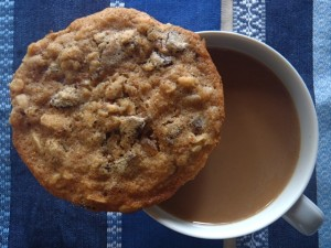 Granola Chocolate Chip Cookie Recipe