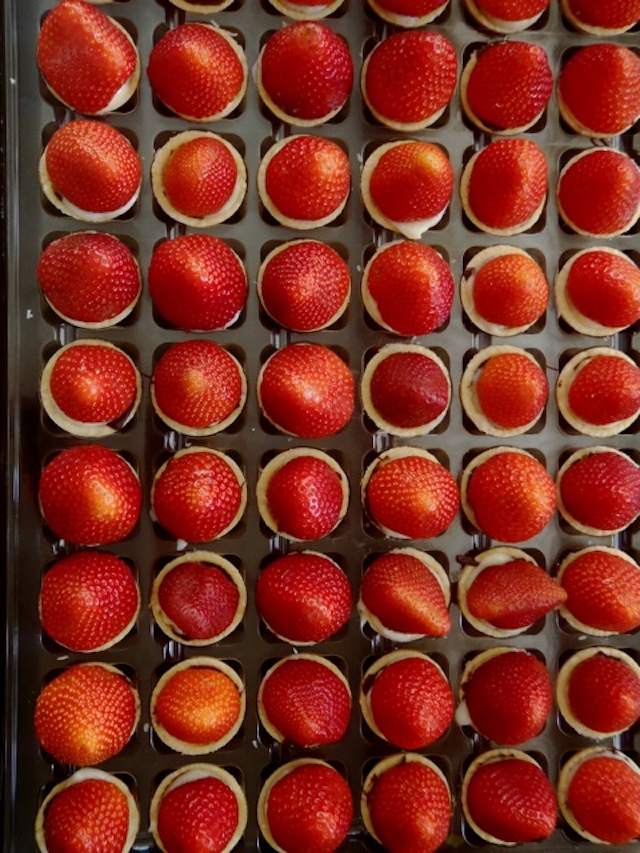 a couple of dozen Fresh Fruit Tartlets, lined up with strawberries