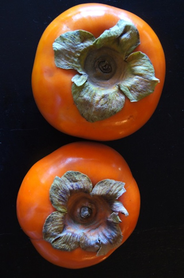 two beautiful dark orange Fuyu Persimmons