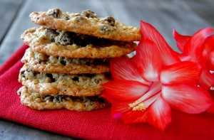 Friday Flowers: Christmas Cactus and Oatmeal Almond Chocolate Cherry Lace Cookies {Gluten-Free}