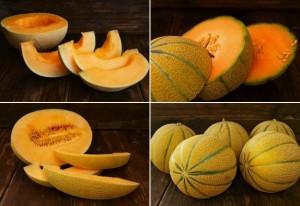 melon-grid