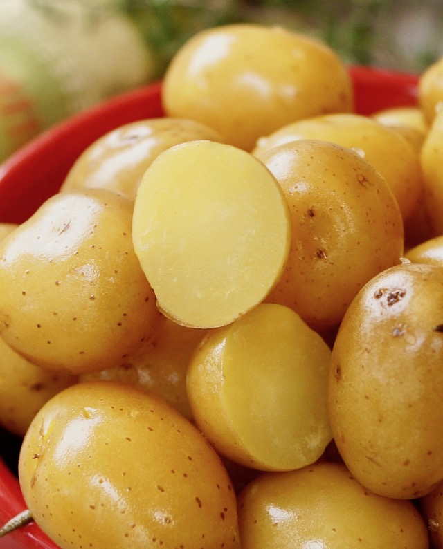 Baby Confit Potatoes sliced in red bowl