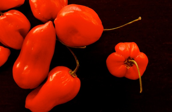 Red Savina Habanero peppers on a black background.