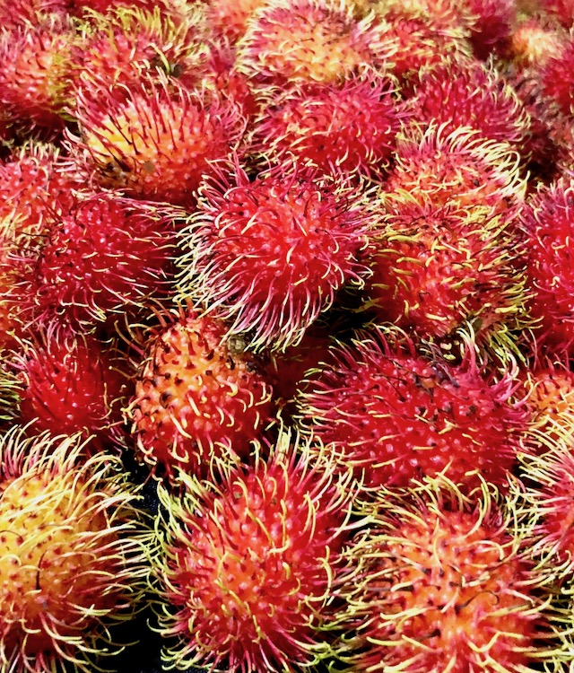 A big pile of bright red rambutans.