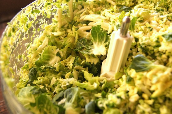 Shredded brussels sptouts in food processor