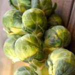 Prosciutto Cranberry Brussels Sprouts Recipe