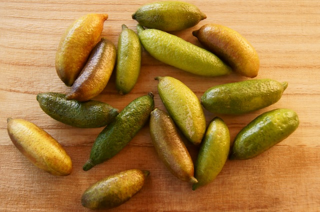 What Are Finger Limes