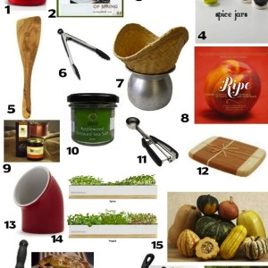 20 Cool Gifts For Foodies For Under $20 – 2012