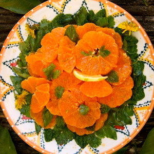 Friday Flowers: Dandelions and Freshly Picked Satsuma Salad Recipe
