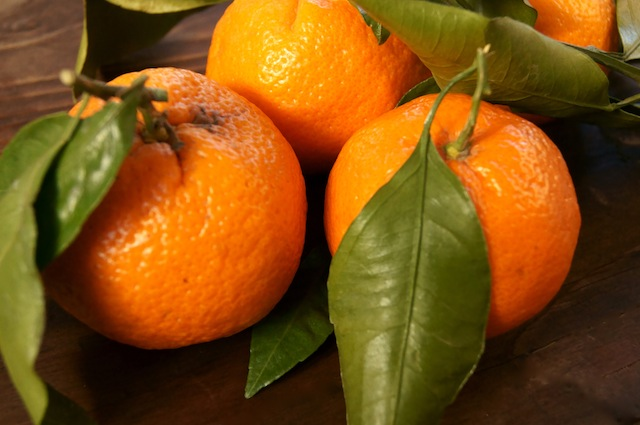 a few Satsuma tangerines with leaves