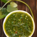 Cilantro Chimichurri Recipe and 50 Best Plants on the Planet