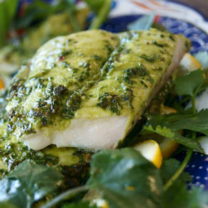 fillet of Dover Sole with chimichurri sauce
