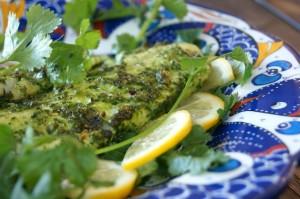 Broiled Cilantro Chimichurri Dover Sole Recipe