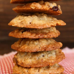Cranberry Oat Chocolate Chip Cookie Recipe