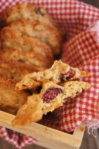 Cranberry Oat Chocoalte Chip Cookies