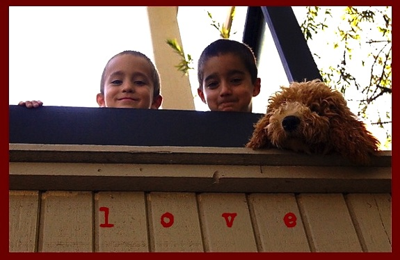 Valentine's two boys and one fluffy dog