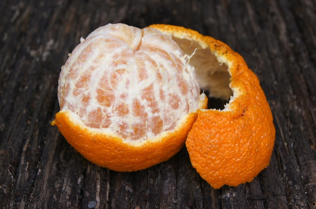 Introducing Sumo Citrus