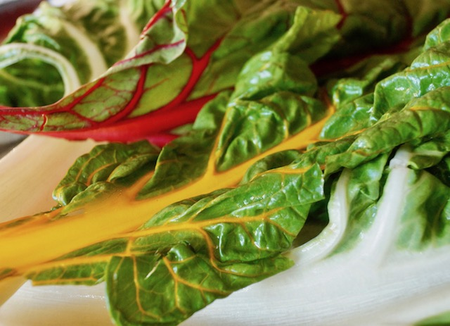 Yellow and red rainbow Swiss chard leaves.