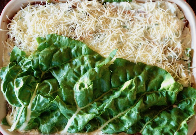 One large Swiss chard leaf over finely grated white cheese in a baking dish.