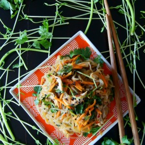 Sesame Chicken Shirataki Noodle Stir-Fry Recipe {Gluten-Free}