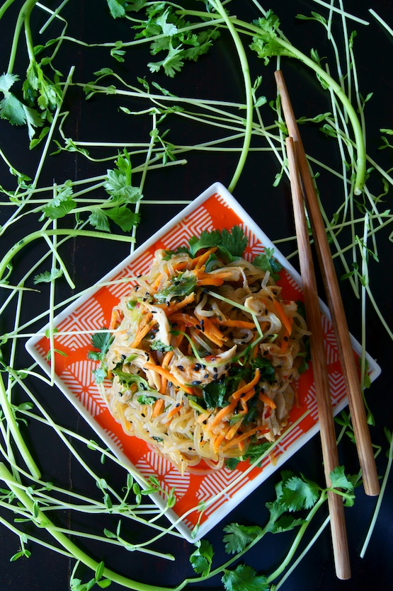 Sesame Chicken Shirataki Noodle Stir Fry