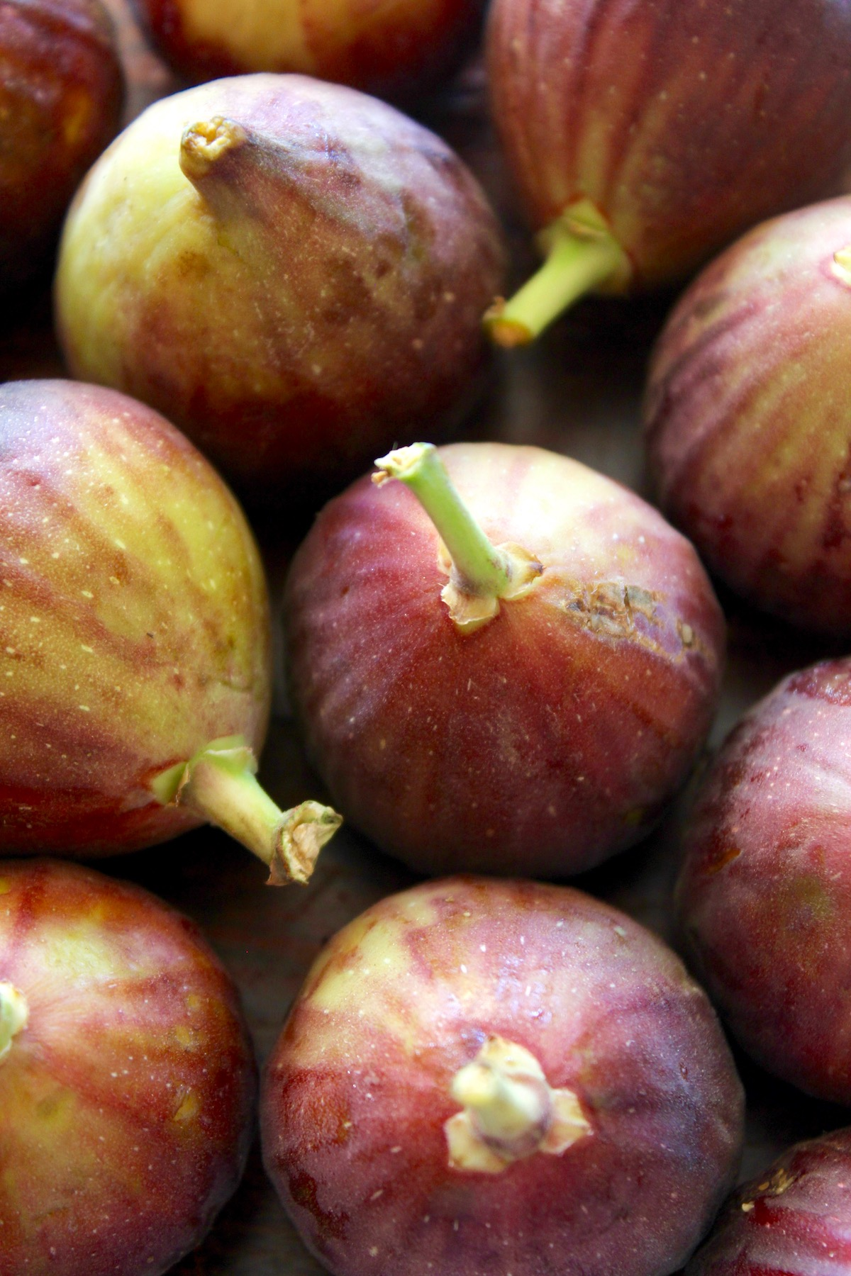 several brown turkey figs with stems pointing up