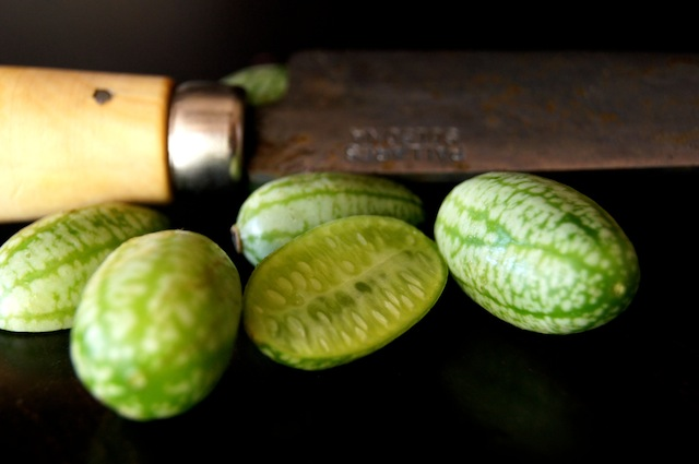 Ponzu-Marinated Watermelon Cucumbers