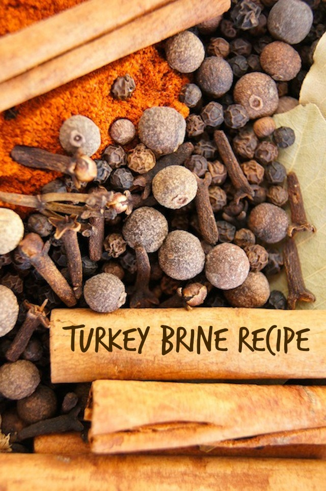 spices for Thanksgiving Turkey Brine including cloves, connamon, paprika