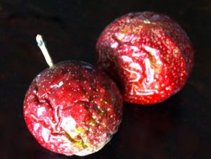 How to Eat and Use Passion Fruit - two wrinkled passion fruits