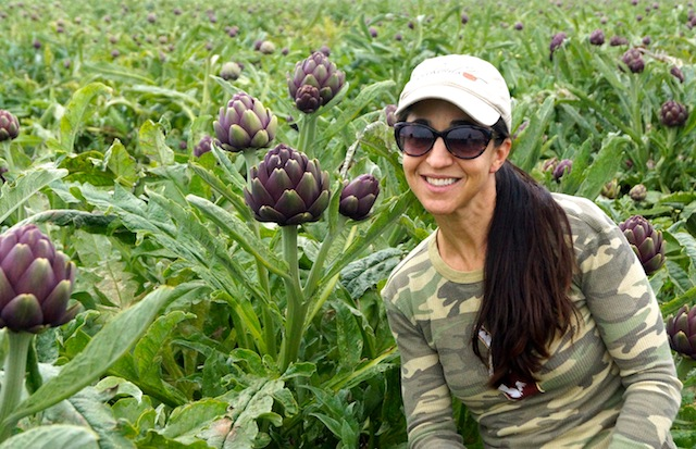 The Beauty of Baroda Farms and the Sangria Artichoke