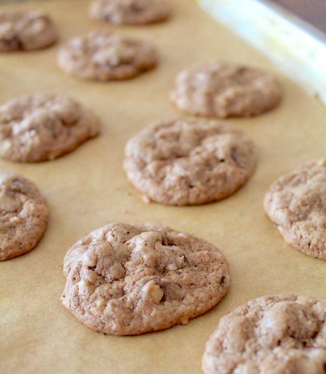 baked hazelnut chocolate cookies on parchment paper