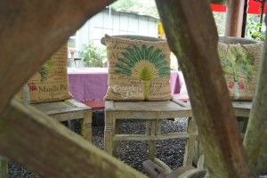 Kona Coffee: Mountain Thunder in a Cloud Forest