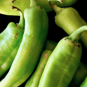 Best Hatch Chile Recipes