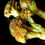 Spicy Quick Pickled Broccoli | cookingontheweekends