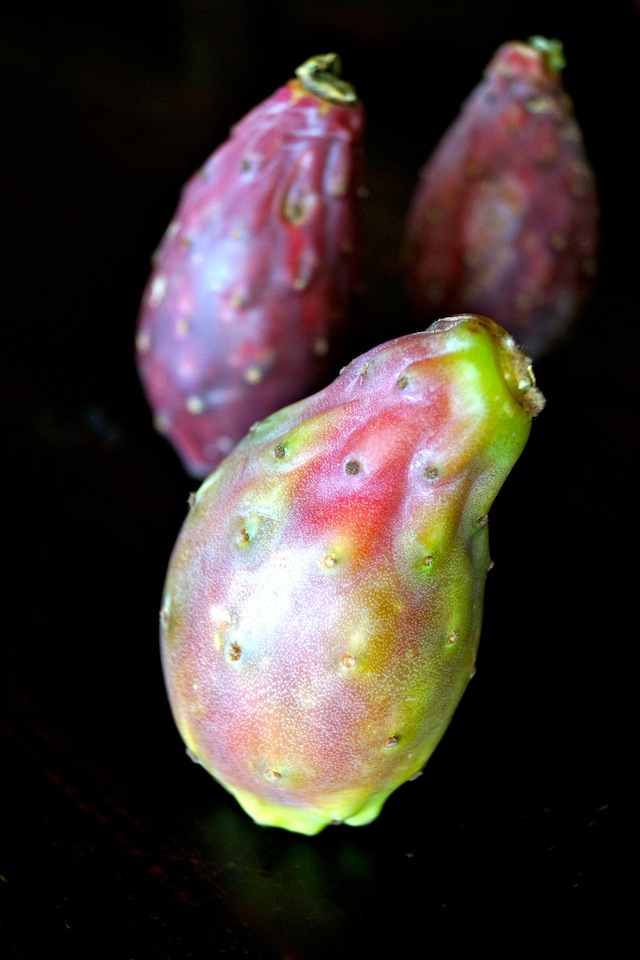 3 Cactus Pears with black background.