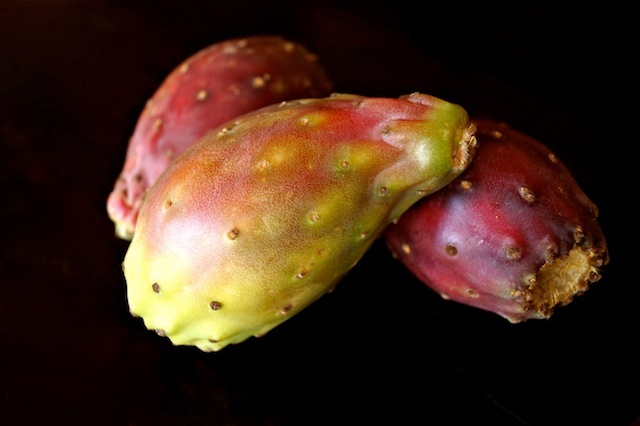 three prickly cactus pears with black background
