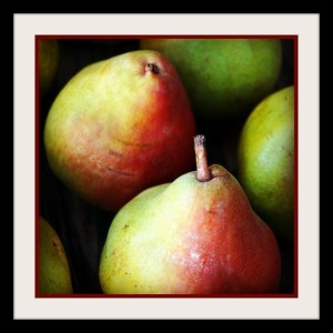Webster Comice Pears