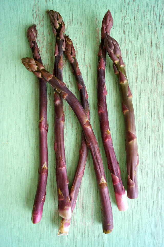Several spears of dark purple asparagus on a minty green-colored, wooden background.