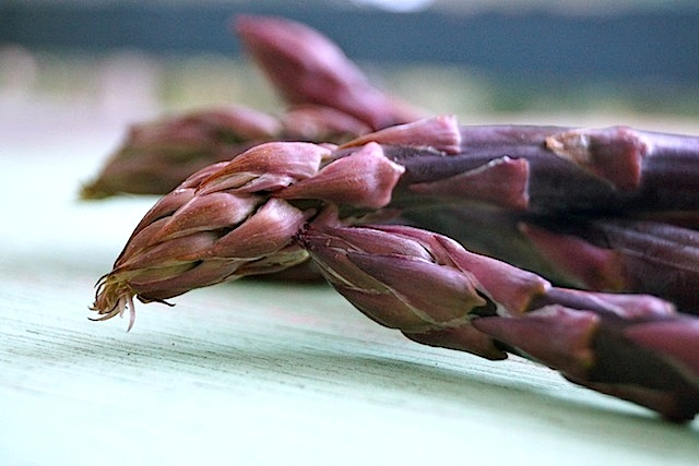 Close up of the tips of a few dark purple asparagus spears on a light green piece of wood.