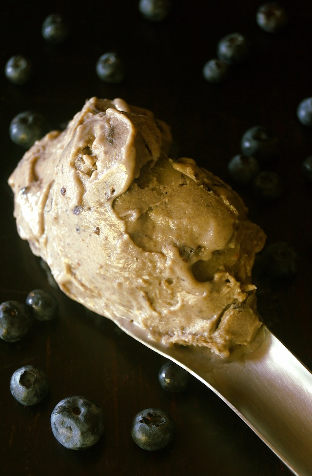One scoop of Caramelized Banana-Blueberry Gelato, surrounded with blueberries.