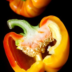 Introducing the Enjoya Pepper