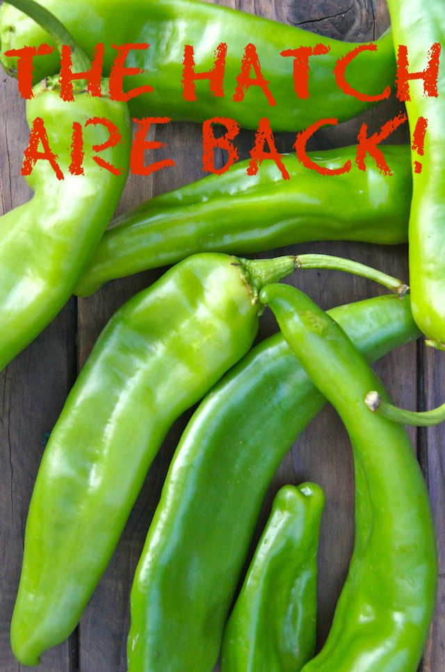 Several bright green Hatch Chiles with red text.