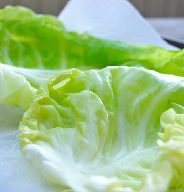 bright green cabbage leaves