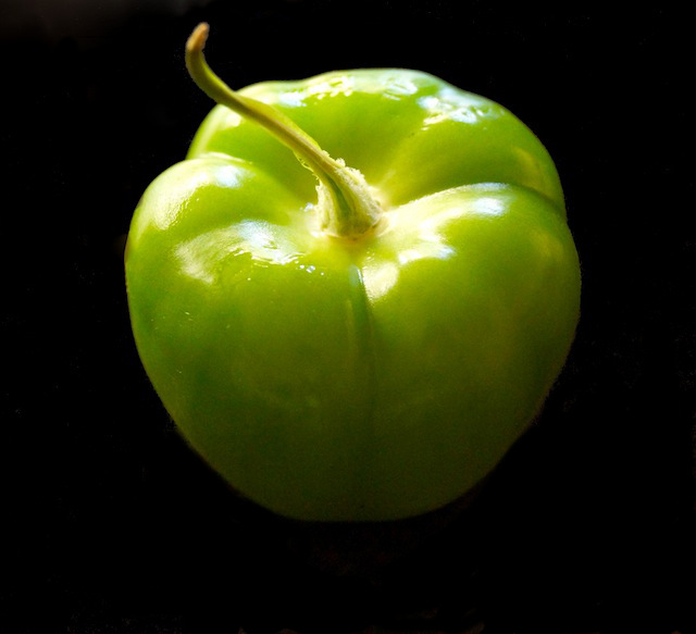 one bright green tomatillo with husk removed