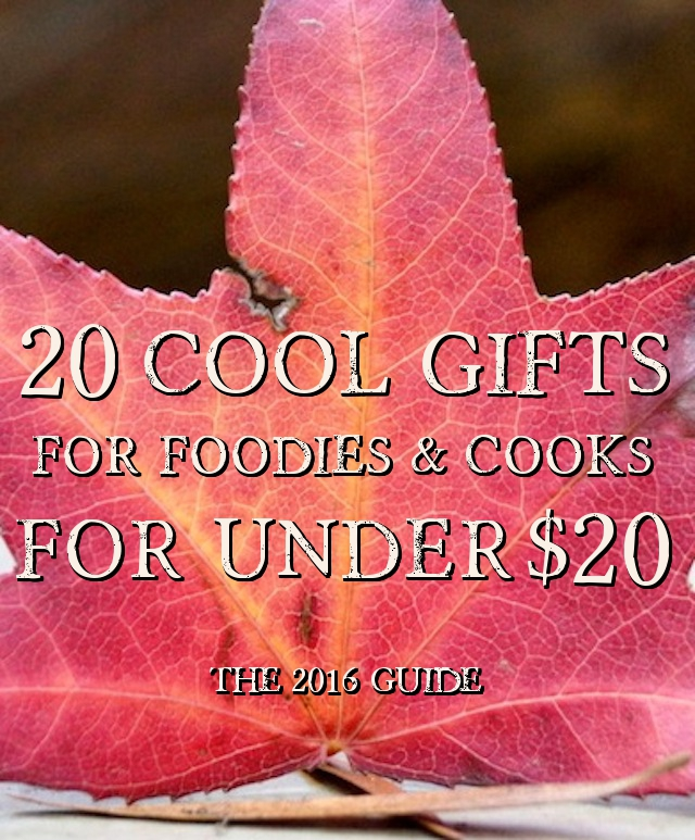 20 Cool Gifts For Foodies & Cooks For Under $20 – The 2016 Guide