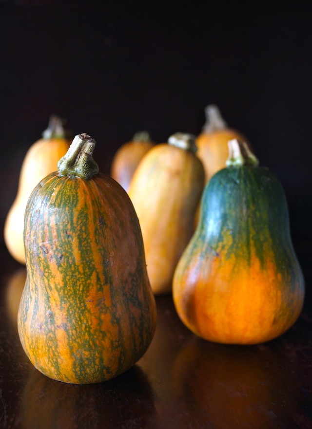 Caramelized Onion-Bacon and Cranberry Honeynut Squash Recipe - a group of orange-green honeynut squash sitting upright