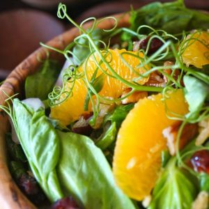 Snow Pea Shoot-Cranberry Salad with Spicy Pecan Dressing