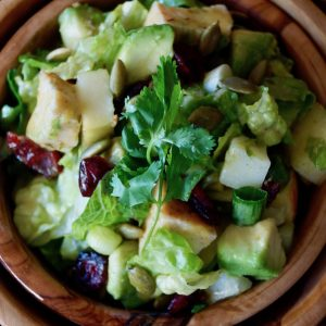 Apple Chicken Salad Recipe with Cranberries